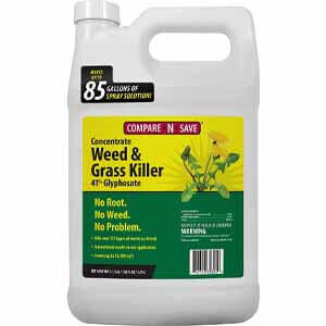 Compare-N-Save 016869 Grass and Weed Killer