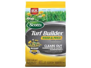 Best Weed And Feed for Your Lawn