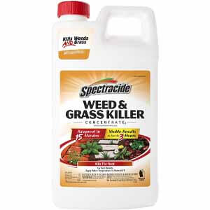 Spectracide Weed & Grass Killer Concentrate:
